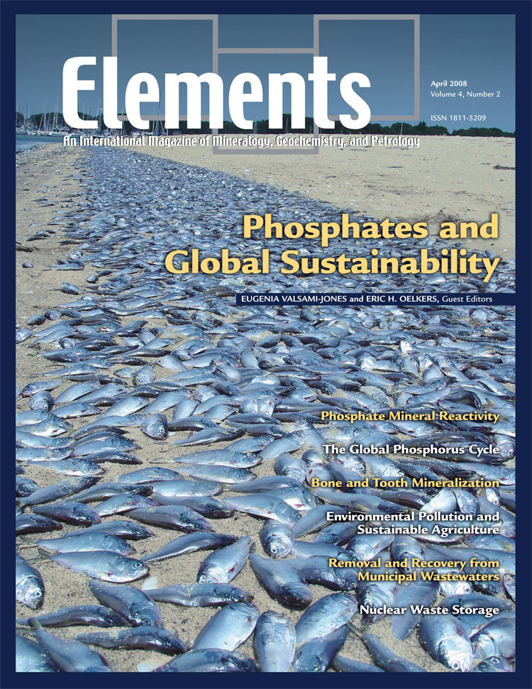 Phosphates and Global Sustainability